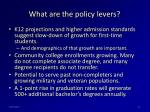 what are the policy levers