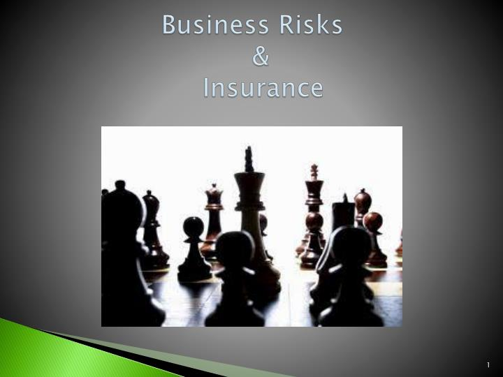 business risks insurance n.