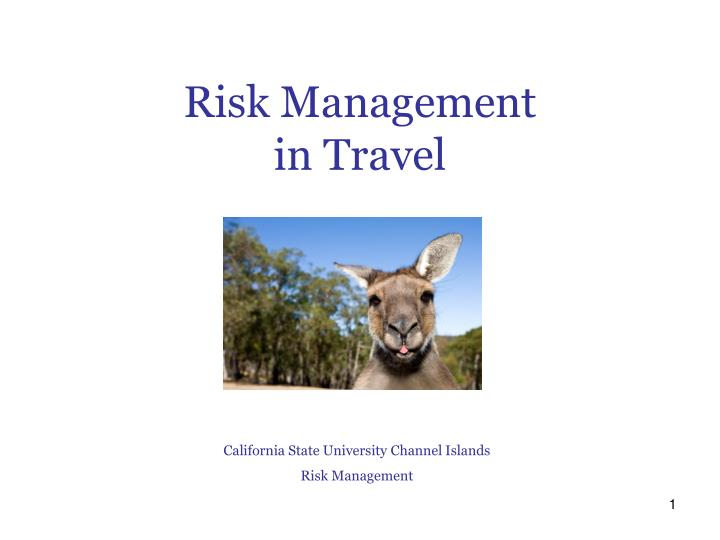 r isk management in travel n.