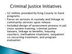 criminal justice initiatives