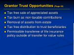 grantor trust opportunities page 24