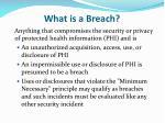 what is a breach