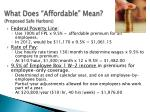 what does affordable mean proposed safe harbors