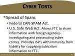 cyber torts2