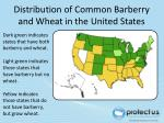 distribution of common barberry and wheat in the united states