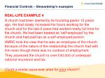 financial controls stewardship s examples2
