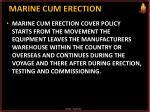 marine cum erection