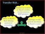 transfer risk