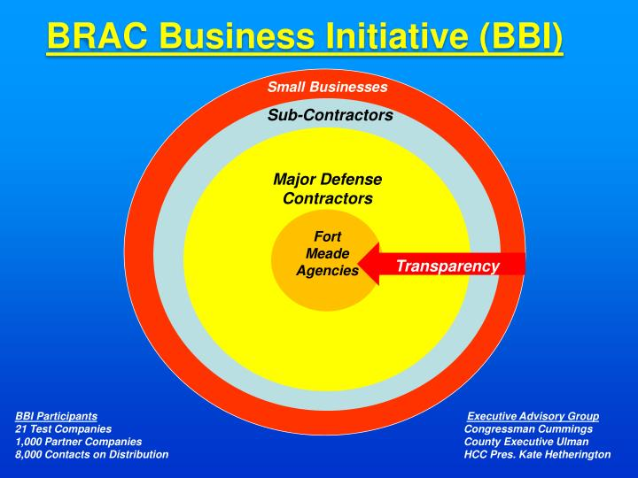 BRAC Business Initiative (BBI)