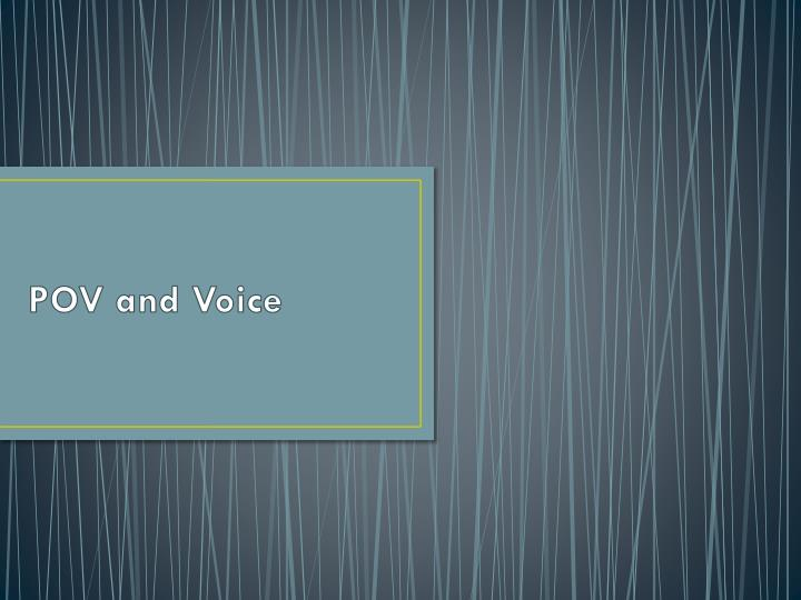 pov and voice n.