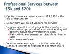professional services between 5k and 20k