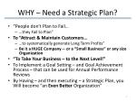 why need a strategic plan