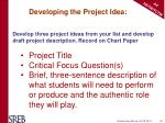 developing the project idea