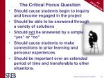 the critical focus question