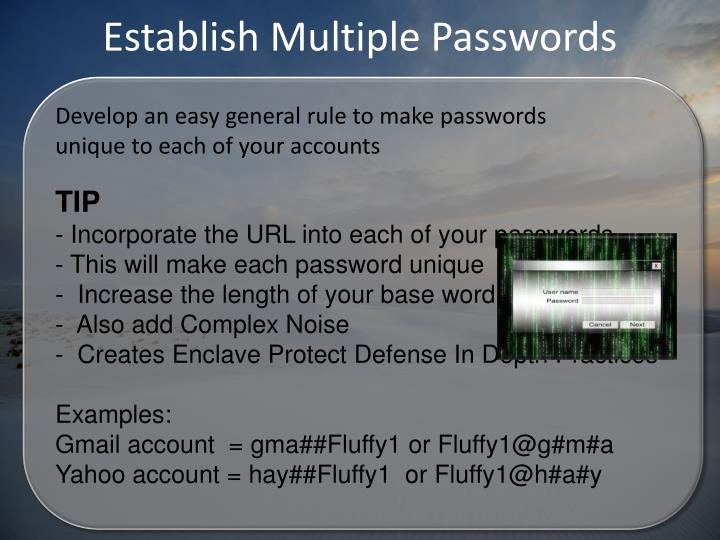 Establish Multiple Passwords