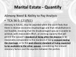 marital estate quantify4