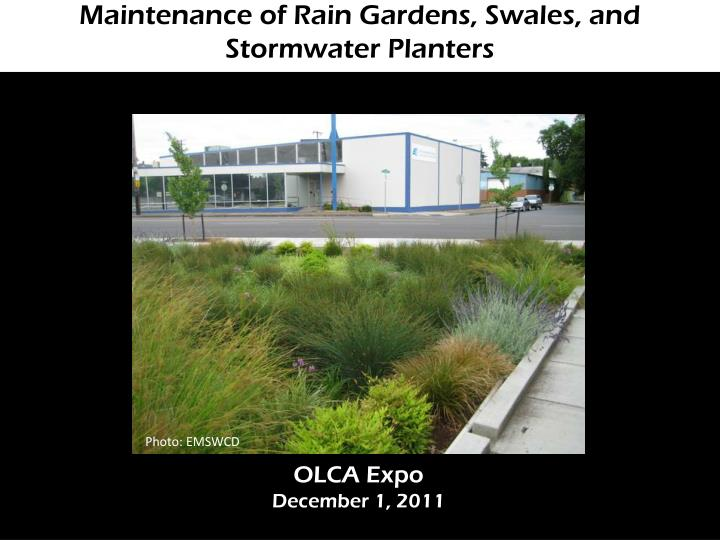 maintenance of rain gardens swales and stormwater planters n.