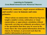 learning to compute cross modal interaction and numerical neurons