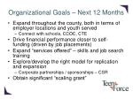 organizational goals next 12 months
