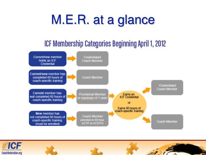 M.E.R. at a glance