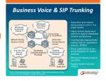 business voice sip trunking
