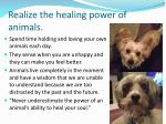 realize the healing power of animals