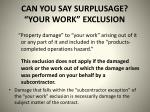 can you say surplusage your work exclusion