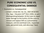 pure economic loss vs consequential damage1