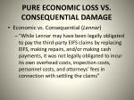 pure economic loss vs consequential damage4