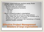 effective project management structure of large organizations