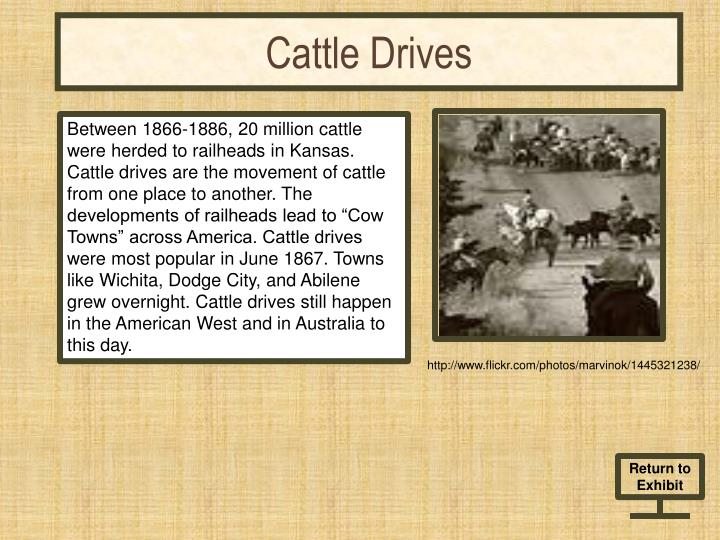 cattle drives n.