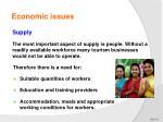 economic issues12