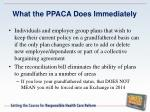 what the ppaca does immediately
