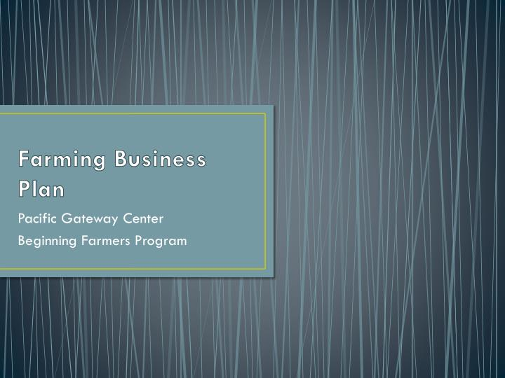 farming business plan n.
