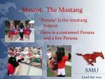 mascot the mustang