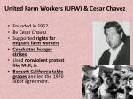 united farm workers ufw cesar chavez