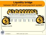 liquidity bridge between besp and local payment system