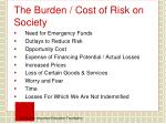 the burden cost of risk on society