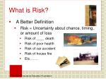 what is risk1