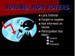 voting non voters