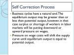 self correction process