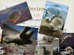 impacts environmental 11