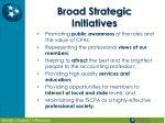 broad strategic initiatives