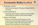 economic risks 1 of 2