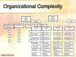 organizational complexity