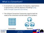 what is a consortium