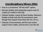 interdisciplinary m inors i ms