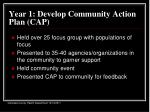 year 1 develop community action plan cap