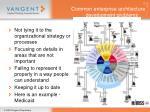 common enterprise architecture development problems