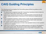 caiq guiding principles
